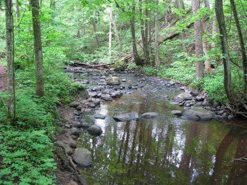 Šavašos upe galima ir baidarėmis praplaukti